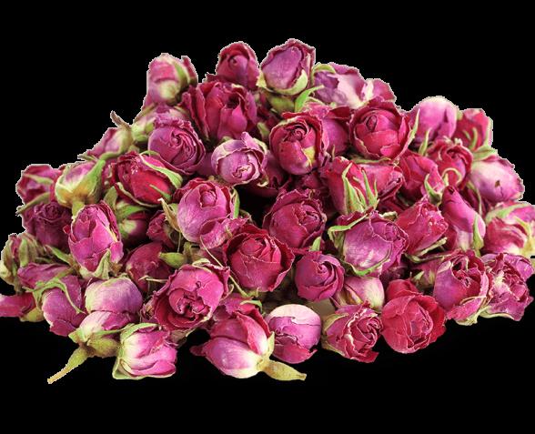 comptoir de la rose Rose de damascena