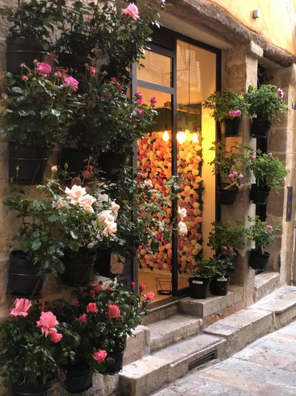 Comptoir de la rose Grasse